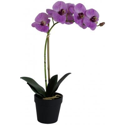 Konstväxt - Orkidé 1 stänglad H48 cm - Rosa
