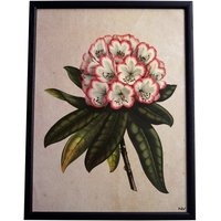 Tavla rhododendron- Svart ram