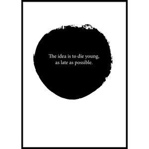 THE IDEA - Poster 50x70 cm & 199.00