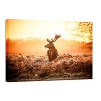 Canvastavla Deer in Sunrise