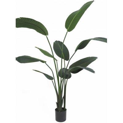 Konstväxt - Papegojblomma H110 cm