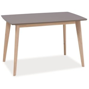 Elaina matbord 120 cm - Grå