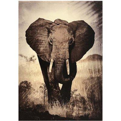 Tavla Elefant