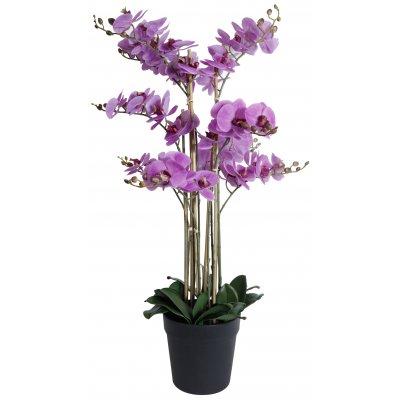 Konstväxt - Orkidé 9 stänglad H90 cm - Rosa