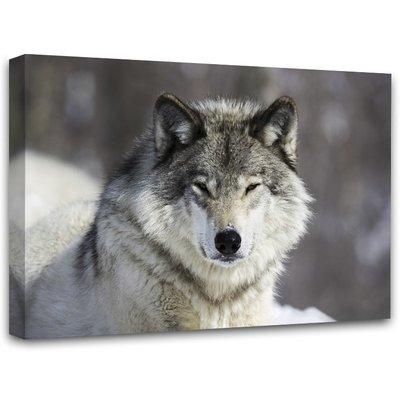 Canvastavla Wolf