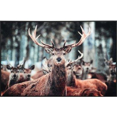 Tavla med ram - Hjort 90x60 cm