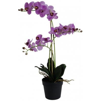 Konstväxt - Orkidé 3 stänglad H64 cm - Rosa