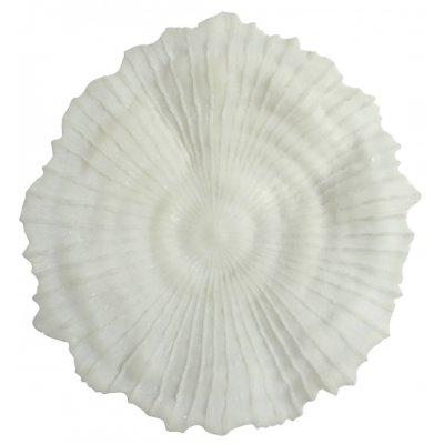 Korall väggdekoration D 56 cm - Ljus